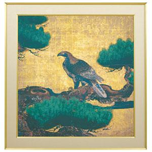 狩野探幽「松に鷹図」画像