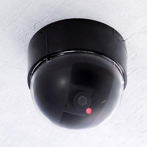 不審者侵入禁止ドーム型ダミーカメラ 2個組画像