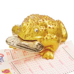 銭天仙人 黄金の招徳蛙画像
